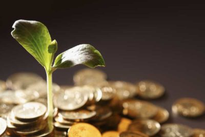 An image of a green plant growing out of a pile of golden coins.