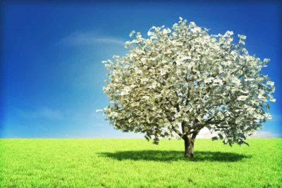 A tree grows leaves of money in an expansive grass field.